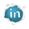 Linked In Icon: Connect with Lilo on Linked In